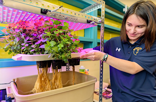 A high schools student tends a hydroponic growing system